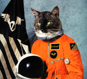 Klaxons, «Surfing the Void»